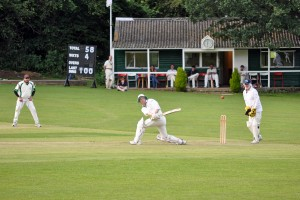 Great Missenden pelicans CC - Simon Tickler